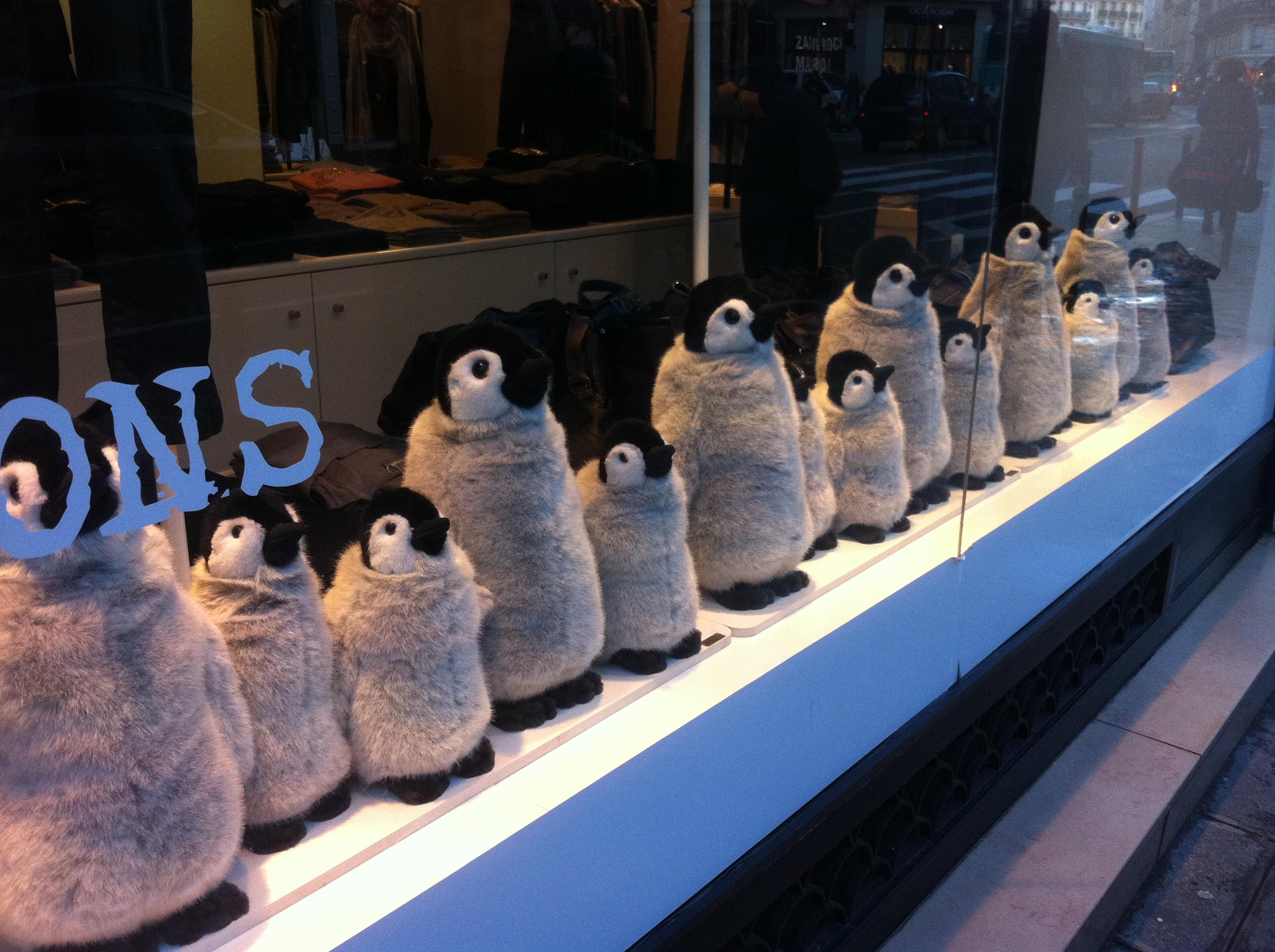 Vitrine de Noël 2011 de Zadig et Voltaire avec des pingouins qui bougent