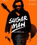 Sugar Man, la recette dun succs au cinma