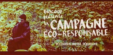 bannière eco resp fastncurious