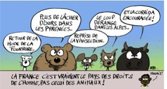 La sentience animale: de la réification à l'anthropomorphisation