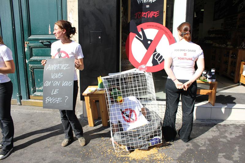 protestation contre les tests sur les animaux
